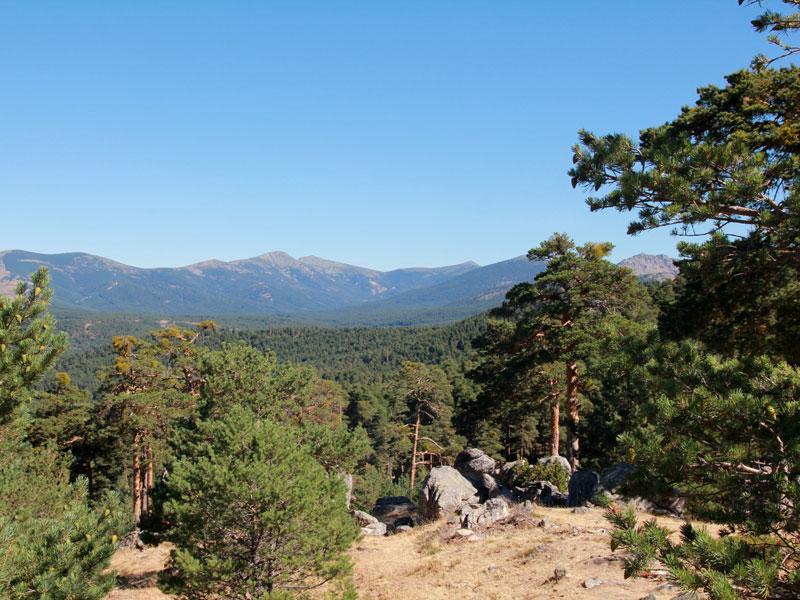 Ruta Ríos y Montañas